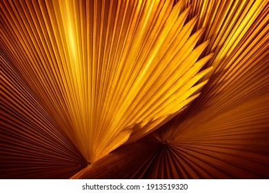 abstract background, gold background for premium product