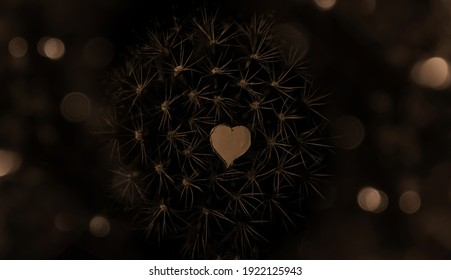 abstract background image with heart in the middle and spikes and glow lights around it.creative background image with heart.heart shaped backdrop with deep meaning.love hurts.backdrop for love.