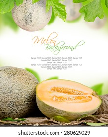 Abstract background made of melons and leaves