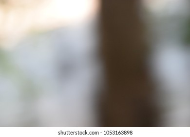 Abstract and Background in the Nature