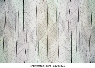 Abstract background from skeletons of autumn leaves