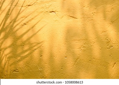 abstract background textuer of shadows leaf on a concrete wall.