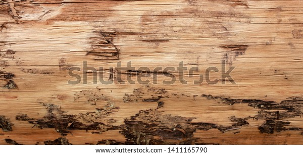 Abstract Background Texture Detail of a wooden log for building.