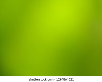 Abstract background texture of a green leaf. Abstract background of Green color.