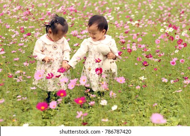 abstract background. two twins girls hand in hand walking on a plantation of cosmos flowers