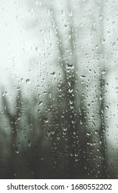 Abstract background of water drops on window glass.View from window in rainy day.Blurred tree trunks on a background.