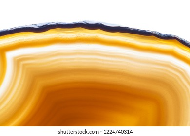 Abstract background, yellow and brown agate slice mineral isolated on white background