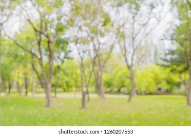 Royalty Free Park Background Stock Images Photos Vectors