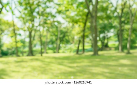 1000 Outdoor Background Stock Images Photos Vectors