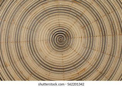 Abstract background,Coiled shell geometry