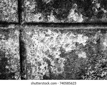 Abstract black and white cement wall for background