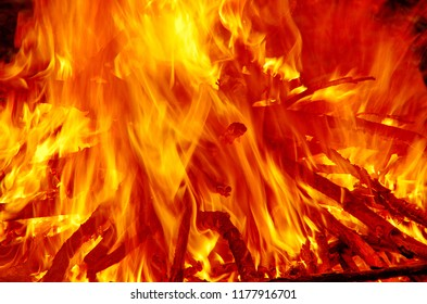 Abstract blaze fire flame texture background. Close-up of blazing campfire in the night. Woods burning in fire.