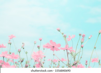 Abstract blue background with pink flower