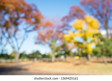 Abstract blur city park autumn season bokeh background - green nature or save the earth concept