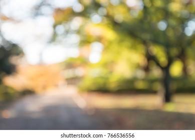 Abstract blur city park autumn season bokeh background