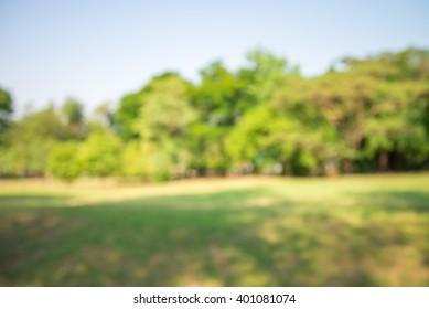 Imágenes, fotos de stock y vectores sobre Blurred Trees