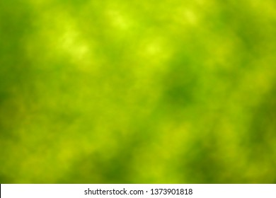 Abstract blur of field
