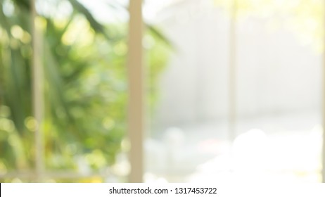 abstract blur garden view from window in the living room with morning light for background concept