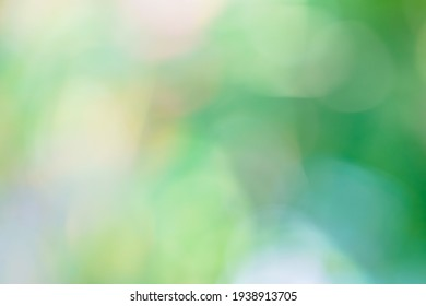 abstract blur green color for background,blurred and defocused effect spring concept for design