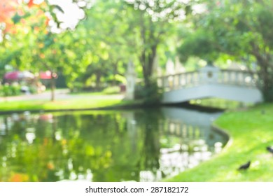 abstract blur of park, unfocus background