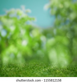 Abstract blured backgrounds with green grass and beauty bokeh
