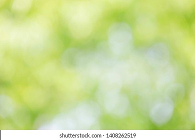 Abstract blurred background of nature