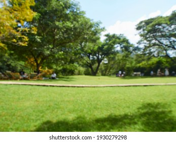 Abstract blurred background of summer nature landscape.