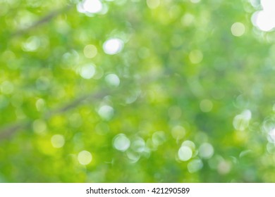 abstract blurred bokeh nature background