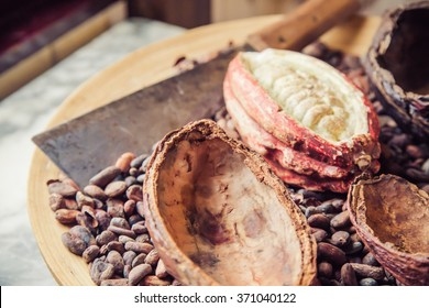 Abstract blurred of cocoa seeds and cocoa beans on the wooden tray