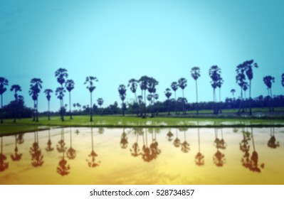 abstract of blurred countryside background with vintage filter.