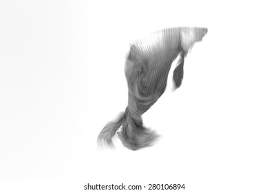 Abstract blurry fighting fish