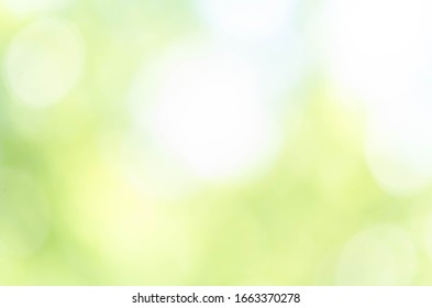 Abstract Bokeh Light Green Background