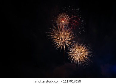 Abstract and brightly colorful firework  in the celebration and anniversary festival.Merry Christmas and New year party light over night sky.