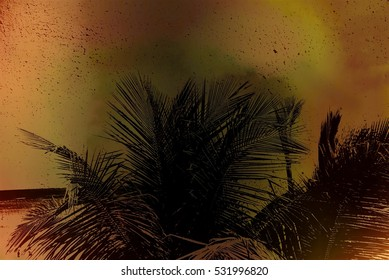 Abstract caribbean palm tree leaves in motion. Black leaf in retro style moving in summer wind on tropical beach, ideal for travel blog, design template, magazines. Image with old grunge filter effect