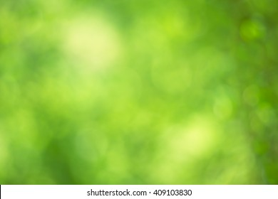 Abstract circular green bokeh background.