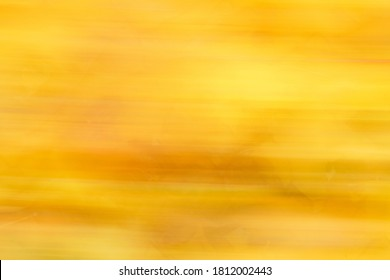 Abstract colorful fall background with yellow leaves