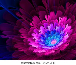 Abstract colorful fractal flower