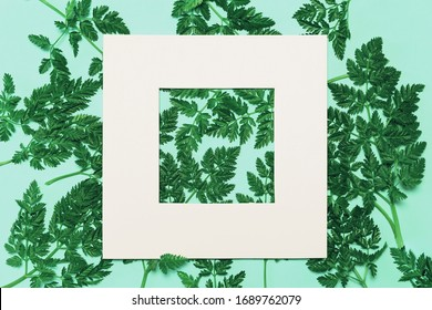 Abstract composition with green leaves and white frame on pastel background. Creative nature layout. Summer concept. Flat lay. Copy space