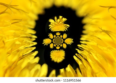 abstract decoration with yellow flowers