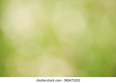 Abstract eco green blurred background, fresh green bokeh background,soft blur green grass