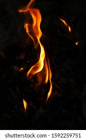 Abstract fire in the fireplace