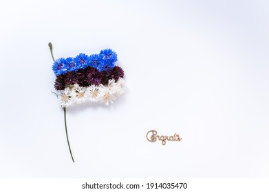 Abstract flag of Estonia made of cornflower flowers with white background. Happy independence day of Estonia. Flag background.
