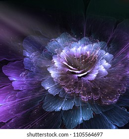 abstract flower, blue and purple, computer generated graphic