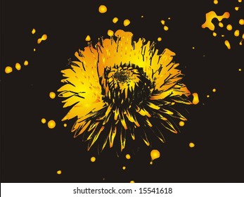 Abstract flower dandelion