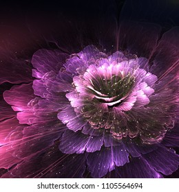 abstract flower, violet and purple, computer generated graphic