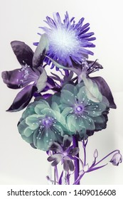 Abstract flowers on white background, negative image.