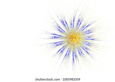 Abstract fractal flower computer generated image. Background design