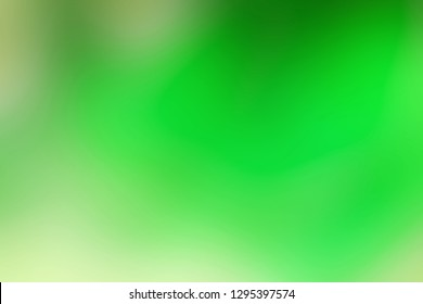 Abstract fresh green gradient background; nature background.