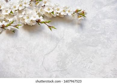 Abstract gentle spring background of marble surface with several flowering cherry branches covered with white flowers, with copy-space