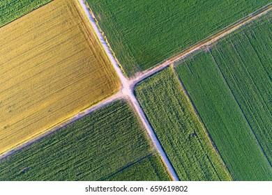 Abstract geometric shapes of agricultural parcels of different crops in yellow and green colors. Aerial view shoot from drone directly above field